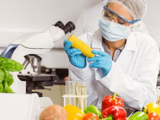 экспорт натуральных и экологичных продуктов