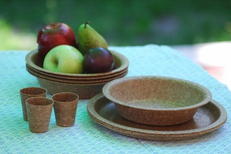 производство экологичной упаковки и посуды