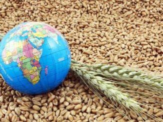 продовольствие и экология