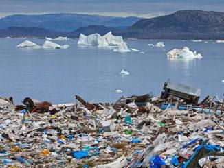бизнес сохраняет экологию
