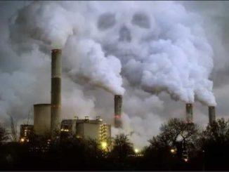 правила возмещения вреда окружающей среде
