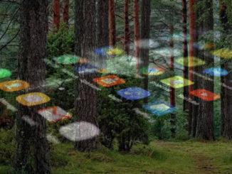 законопроект, направленный на цифровизацию лесной отрасли