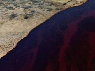 Новое в ликвидации разливов нефти в России