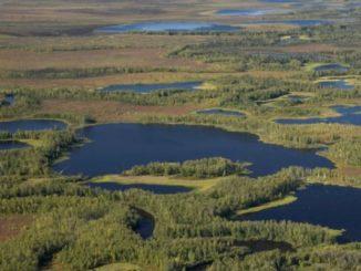 День водно-болотных угодий