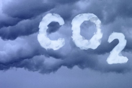 Методология поглощения парниковых газов.
