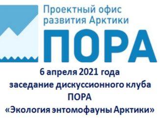 заседание дискуссионного клуба ПОРА «Экология энтомофауны Арктики»