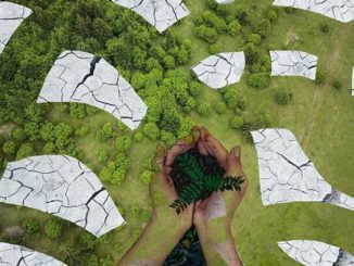 Встреча «Группы двадцати» по вопросам экологии