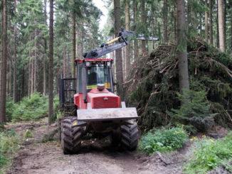 Электронный портал лесного законодательства стран мира