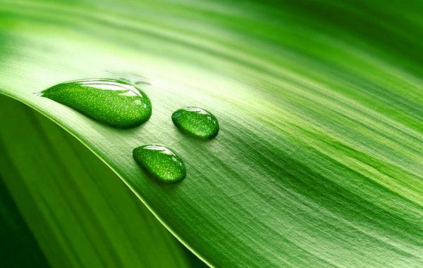 зеленого финансирования